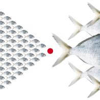 Aquativ
