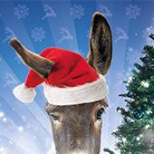 Les Libraires Ensemble vous promettent un Noël magique !