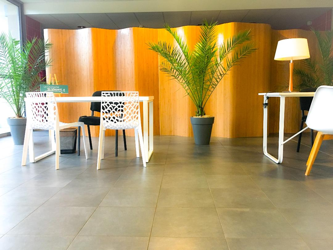 Espace bureaux esprit végétal