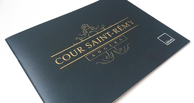 Cours Saint-Remy - Couverture